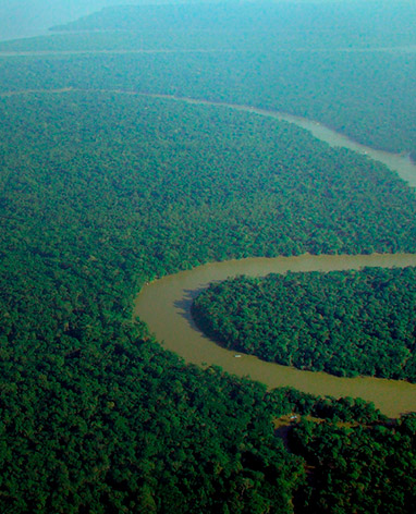 Imagem Descriptive - Are not involved with deforestation in the amazon biome after 2009